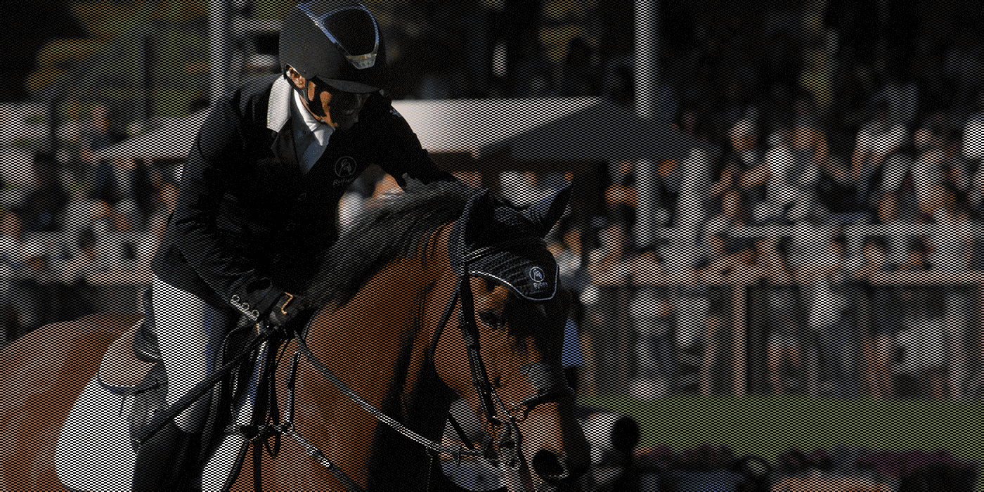 Offering maximum performance to each and every equestrian