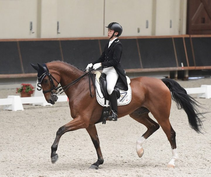 第62回全日本学生賞典馬場馬術及び総合馬術競技大会